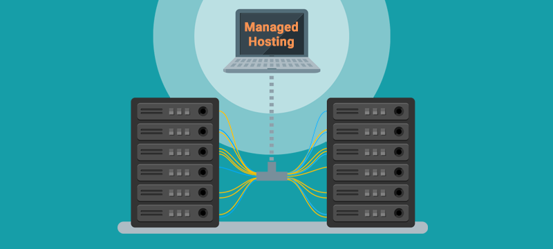 managed hosting for small business